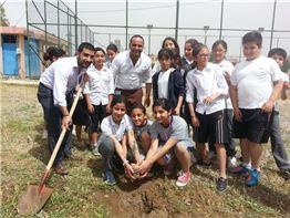 Tree Planting 2014-2015